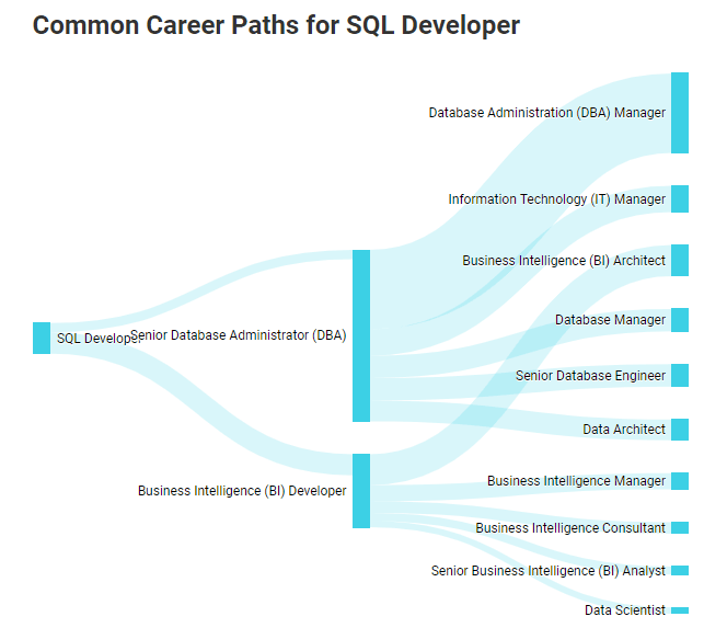 SQL developer salary career paths