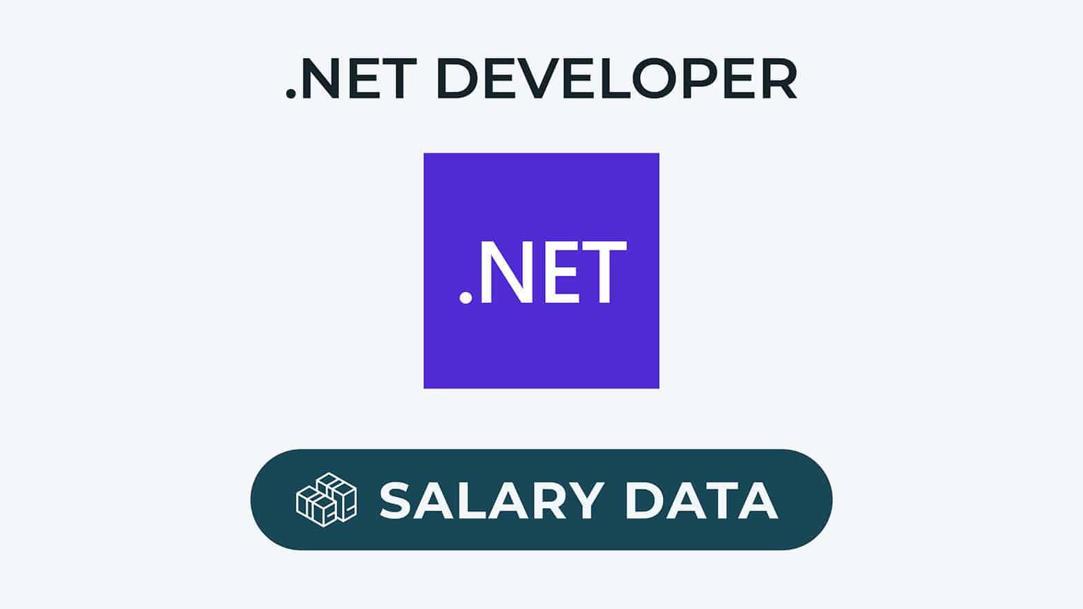 .net-lønoplysninger